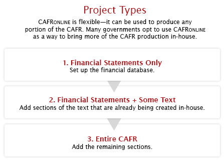 Project Types: CAFRONLINE is flexible -- it can be used to produce any portion of the CAFR.